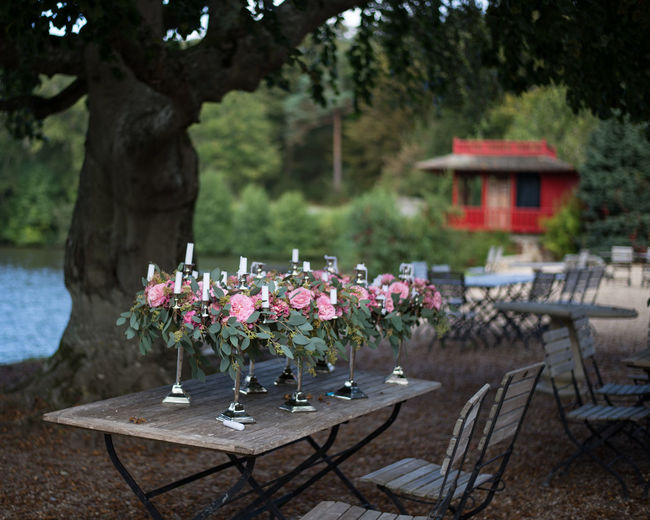 Absence Arrangement Beauty In Nature Chair Day Decoration Dining Table Empty Flower Focus On Foreground Fragility Freshness Growth In Bloom Nature Petal Place Setting Religious Offering Springtime Table Tourism Tourist Resort Tranquility Tree Vacations