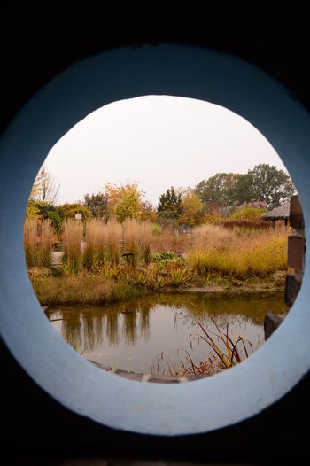 Autumn Window Beauty In Nature Circle Day Lake Nature Plant Reflection Water
