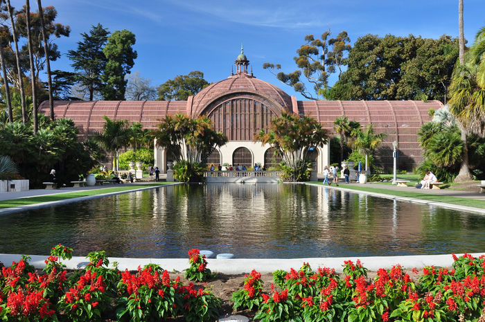 View of the Botanical Building and pond in Balboa Park in the city of San Diego, California. Architecture California Pond San Diego Serenity Tranquil Tranquility Arbor Arboretum Balboa Park Botanical Botanical Garden Botany Building El Prado Flowers Foliage Garden Idyllic Landscape Lush Foliage Peaceful Pondscape Serene Tropical