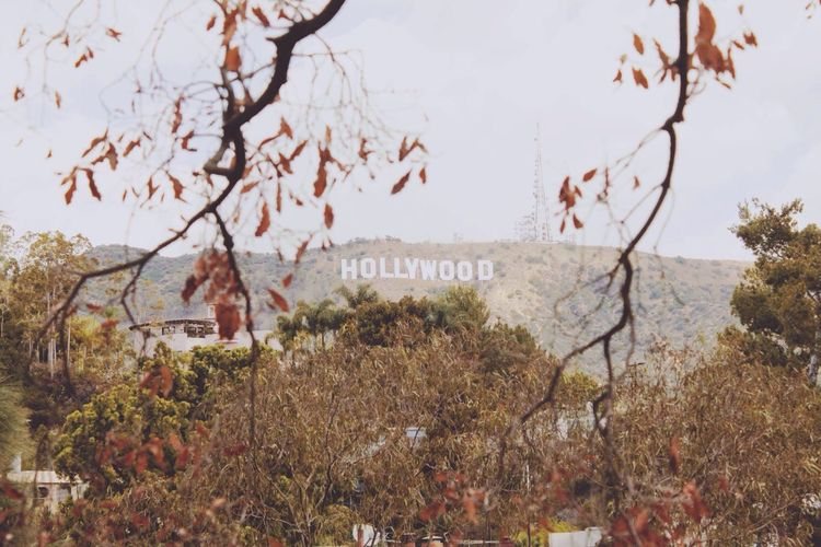 Wanderlust Travel Photography USA Trip Los Angeles, California Los Ángeles Hollywood Sign Hollywood Traveling