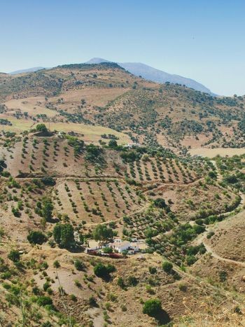 Andalucia landscape. Finca Caracol Agriculture Scenics Landscape Outdoors Mountain Beauty In Nature Nature Rural Scene Tranquility No People Springtime Tree Mountain Range Day Travel Destinations Desert Sky Awehaven's Andalucia Andalucia Spain Andalucía Nature Andalucia Rural Andalucía