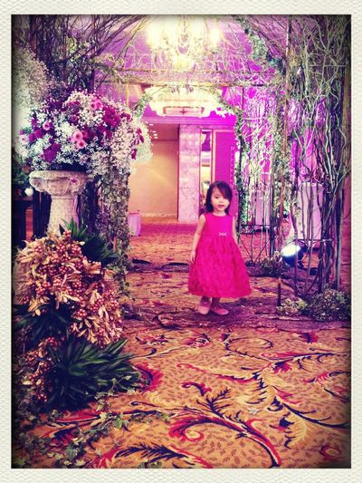 Princess Wedding with Baby Lyla in a Beautiful Dress