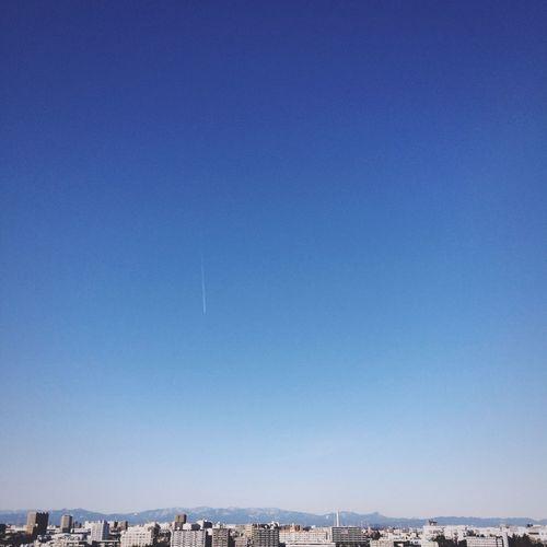 Sky おちてくる Showcase: February