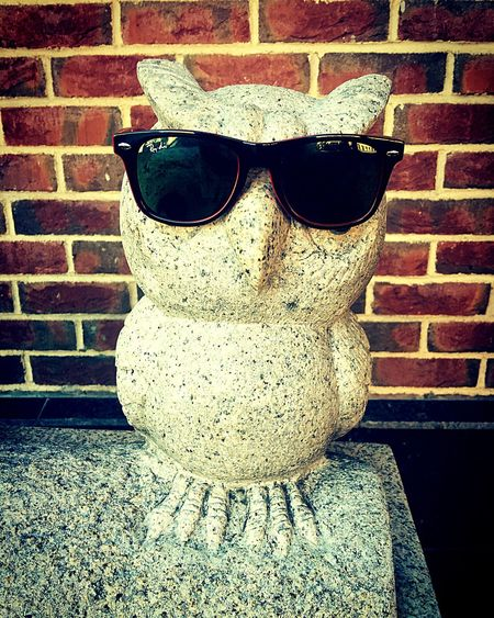 Sunglasses Close-up Day Outdoors Weathered Human Face No People Attitude Owl Rayban почтовый ящик упоротость  Сова очки