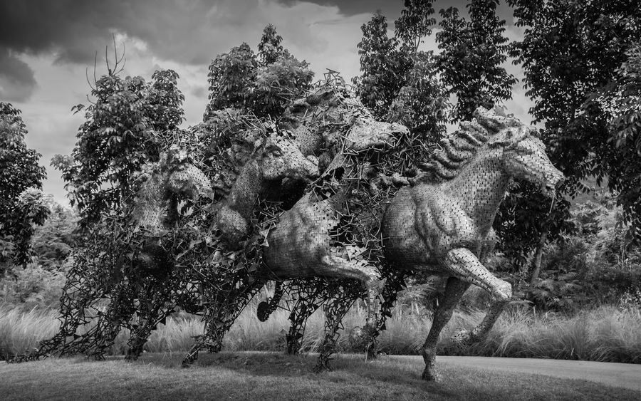 Monday, August 21, 2017 2:45 PM at khaoyai resrot ,Thailand news photo Horse Sculpture Animal Themes Arts Culture And Entertainment Day Grass Growth Mammal Nature No People Outdoors Sky Tree