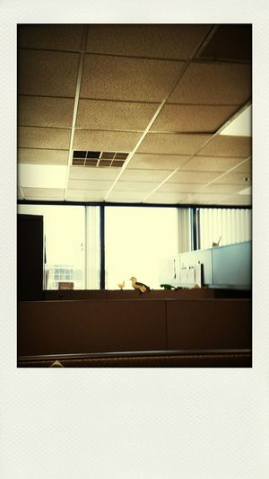 Desklife First Eyeem Photo