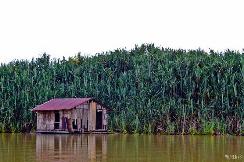 Lake Chini VisitPahang