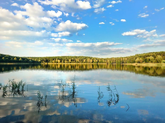 Jezioro żbik Water Sky Lake Reflection Scenics Blue Nature Beauty In Nature Day Standing Water Poland Warmia Mazury