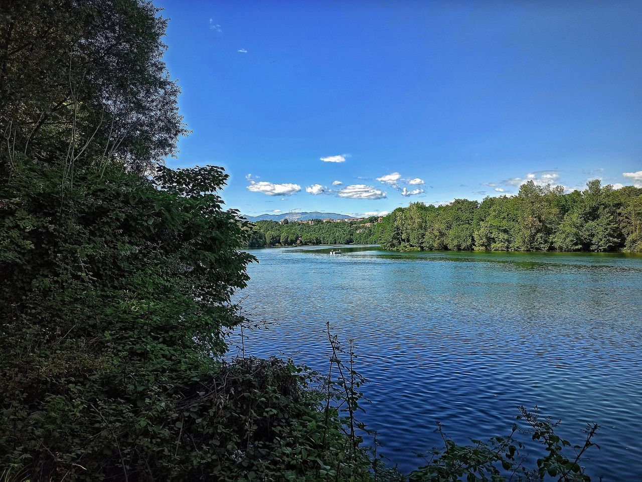 SCENIC VIEW OF LAKE AGAINST TREES AGAINST BLUE SKY