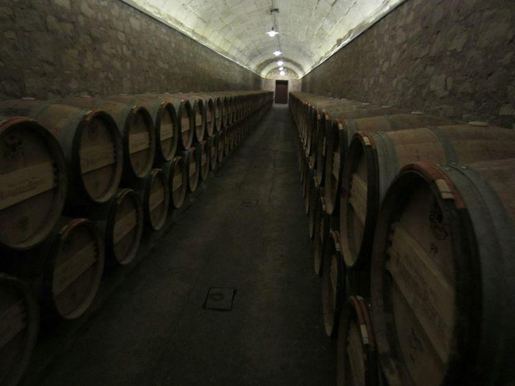 Larioja Bodegas Marquesderiscal Wine Taking Photos SPAIN Eyem Best Shots Popular Photos