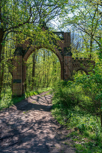 Gate to the park of the castle Koppitz, Poland Castle Koppitz Koppitz Poland Plant Tree Architecture Nature Arch No People Built Structure Green Color Shadow Day Entrance Sunlight Gate Outdoors History Foliage Building Exterior The Past Footpath Lush Foliage