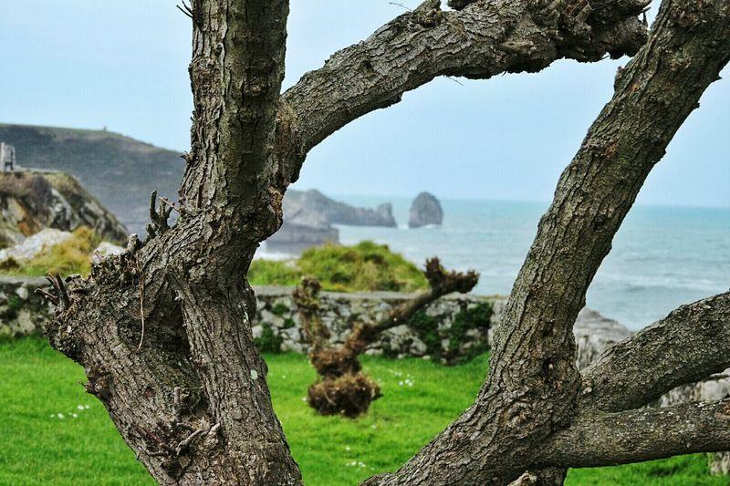 Paseo de San Pedro en Llanes Asturias Love This City Nature Asturias_ig Everyday Joy The Places I've Been Today