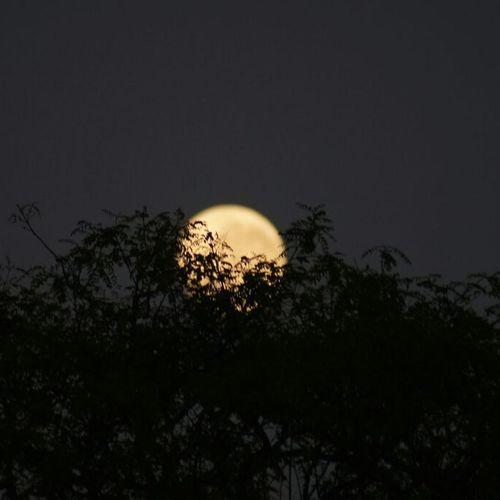 Moon Moonlight Beauty In Nature Illuminated