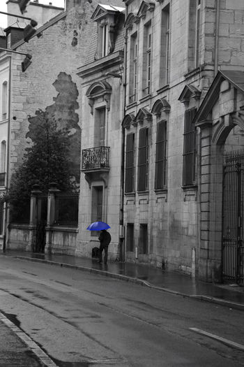 Building Exterior Architecture Built Structure City Real People Full Length Building Street Walking One Person Rear View Transportation Road Men Day Outdoors Window Lifestyles Umbrella Rain Blue Autumn Mood