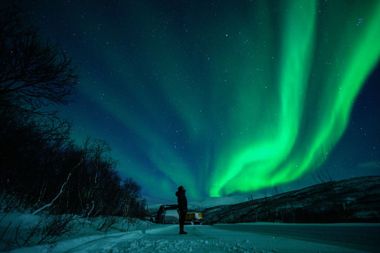 Aurora Borealis Northern Lights Norway Travel Photography Tromsø Winter Adult Astronomy Aurora Polaris Beauty In Nature Cold Temperature Full Length Galaxy Illuminated Landscape Nature Night One Man Only One Person Outdoors Polar Night Real People Scenics Sky Snow Space Standing Star - Space Svalbard  Tranquility Travel Destinations Tree Weather Winter
