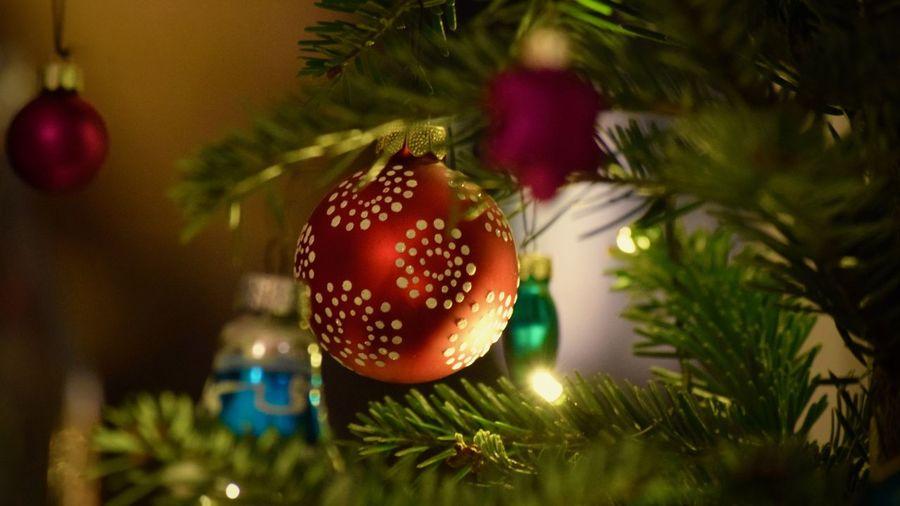 #Christmas #deco #decoration #red #TBT #weihnachtsbaum #WEIRDO #Xmas  #xmastree