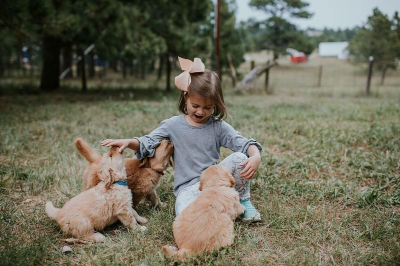 Dog Pets Friendship Domestic Animals Smiling One Animal Happiness Cheerful One Person Animal Animal Themes Childhood Cute Children Only Child Puppy Golden Retriever One Girl Only Full Length Sitting