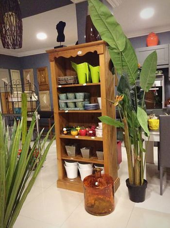 Decoration Beauty In Nature Maestro  Plants 🌱 Meuble Beautiful Day Place To Visit Cadeaux Good Times 👍🏻👌🏻✨❣ Choice Shelf Kitchen Indoors  No People Freshness Variation Illuminated Nature Day EyeEmNewHere Millennial Pink Welcome To Black