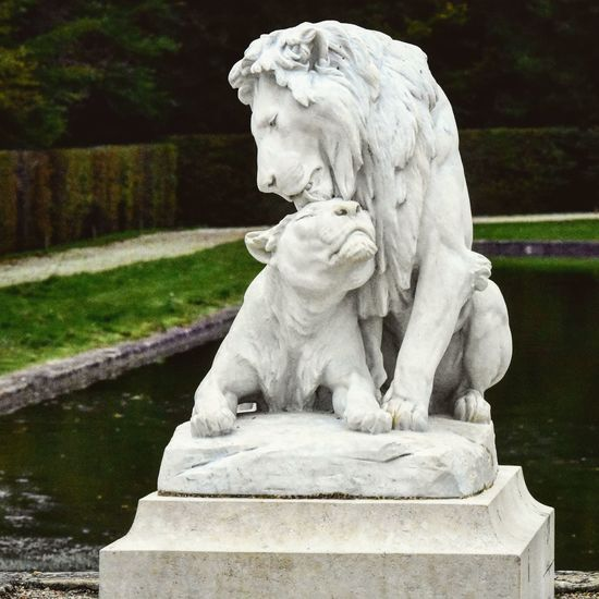 Statue Sculpture Outdoors Oeuvre Work Lion Lioness Lionne Relief Blanc Old Anciens Pierre Rock White