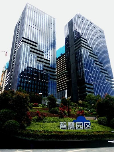 智慧园区 Architecture Skyscraper Modern Building Exterior Built Structure Growth No People Outdoors Sky Day City Office Tree