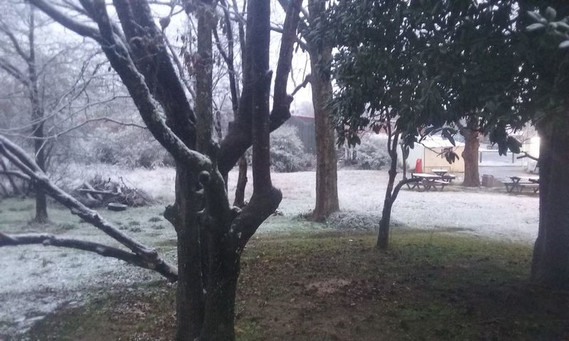 Nature starting to Snow