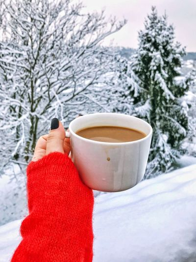 Winter Snow Cold Temperature Human Hand Human Body Part Drink One Person Tree Coffee Cup Warm Clothing Holding Food And Drink Coffee - Drink Weather Red Frozen Nature Day