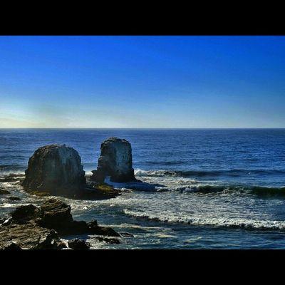 Punta De Lobos Canon Sx50 Instalike Instamoments instamoments chilegram chileimages canonchile instachile photooftheday snapseed sea