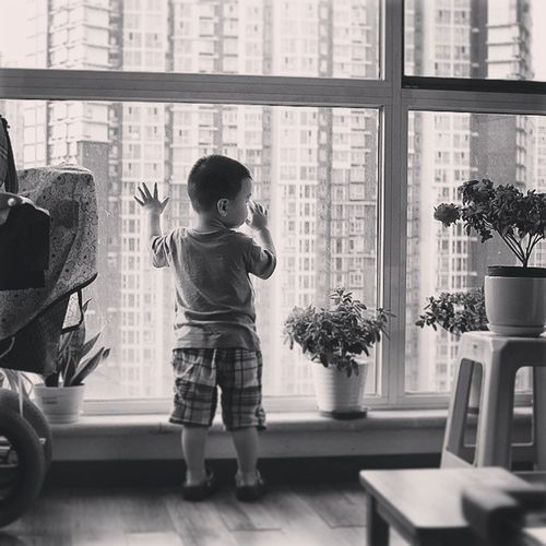 壮壮 Bw Window Flower baby look building lean summer