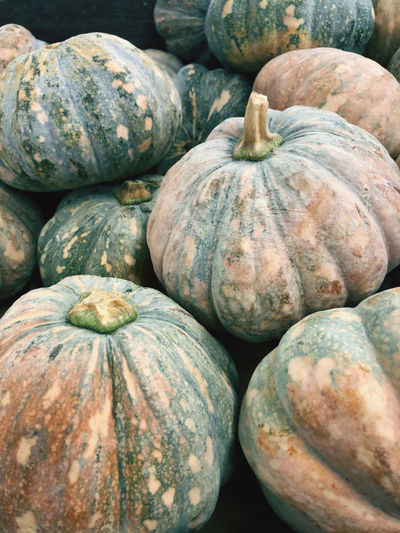 Pumpkins for sale in market