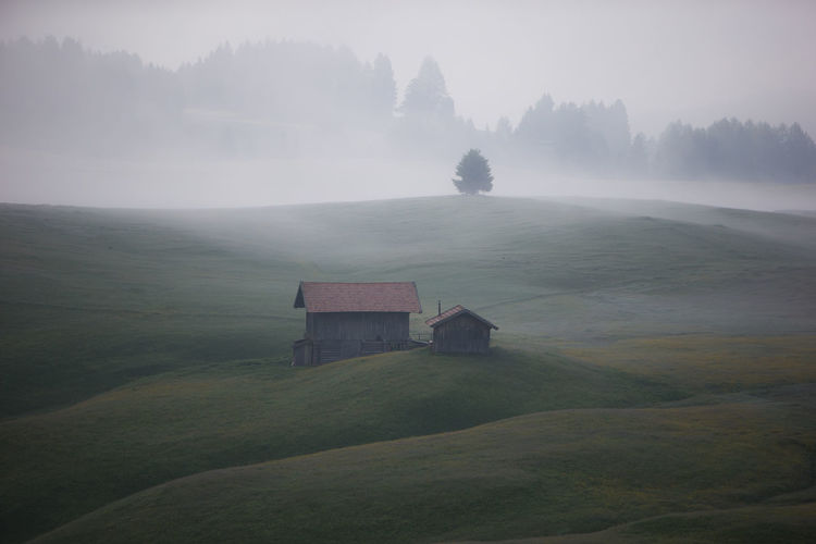 Foggy Weather Grass Architecture Beauty In Nature Built Structure Cabin Cabin In The Woods Environment Field Fog Foggy Landscape Foggy Morning Grassland Land No People Plant Scenics - Nature Tranquil Scene Tranquility Tree Wood Stock