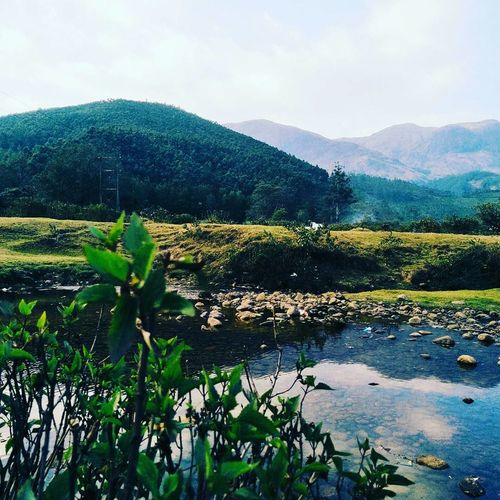 Nature Beauty In Nature Water Tree Green Color Green Color Kerala India Kerala The Gods Own Country ;) MunnarHillstation Kerala_trip Cloud - Sky Kerala_tourism Munnar Kerala Keralatourism Munnar Tea Estates Beauty In Nature Tea Crop Krala Tourism Tree Beauty Landscape Freshness Nature