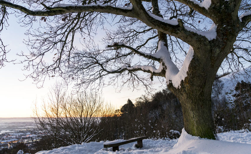 Scenes from Malvern after the early December 2017 snowfall. Britain Malvern Hills Snow ❄ Wintertime Bare Tree Beauty In Nature Branch Cold Temperature Day Frozen Landscape Nature No People Outdoors Scenics Sky Snow Snowfall Tranquil Scene Tranquility Tree Uk Weather Winter Worcestershire