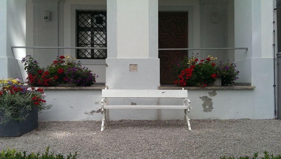 Flower pots on porch