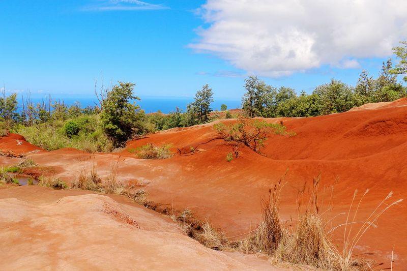 Red Sand, Kauai