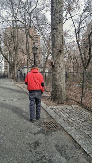 One Squirrel One Person Seward Park Nyc Built Structure City Living Pied á Tree Full Length Rear View Outdoors Day Standing Nature Architecture Warm Clothing People Adult