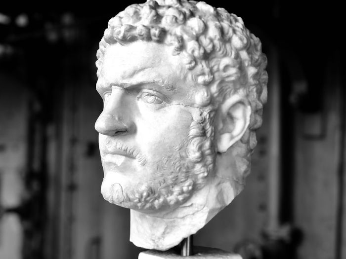Close-up of bust