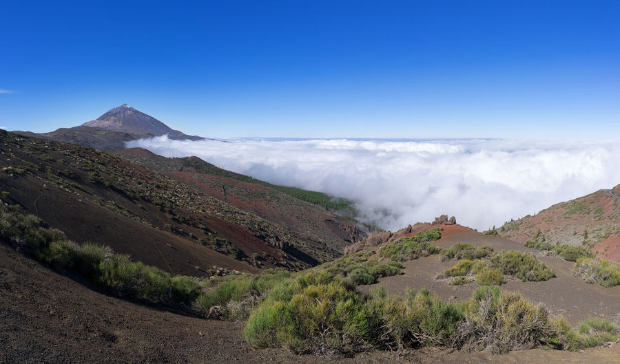 National park of Tenerife - landscape with mountain Teide and sea of clouds above the Orotava Valley Canary Islands Cloud Holiday National Park Nature Orotava Valley Panorama SPAIN Sea Of ​​clouds Travel Above Above The Clouds Attraction Destination Landscape Mountain Orotava Pico Del Teide Teide Tenerife Tourism Vacation Valley Volcanic  Volcano