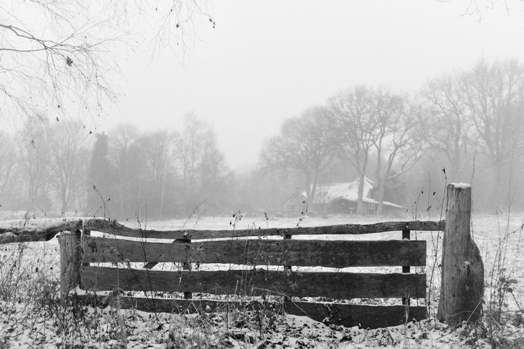 Diever the Netherlands Drenthe Drenthe Netherlands Blackandwhite Blackandwhite Photography Blackandwhitephotography Blackandwhitephoto Black And White Black And White Photography EyeEm Best Shots - Black + White Cold Freezing Cold Freezing Cold Temperature Barbed Wire Protection Snow Safety Sky Wooden Post Foggy Boundary Chainlink Fence Fence