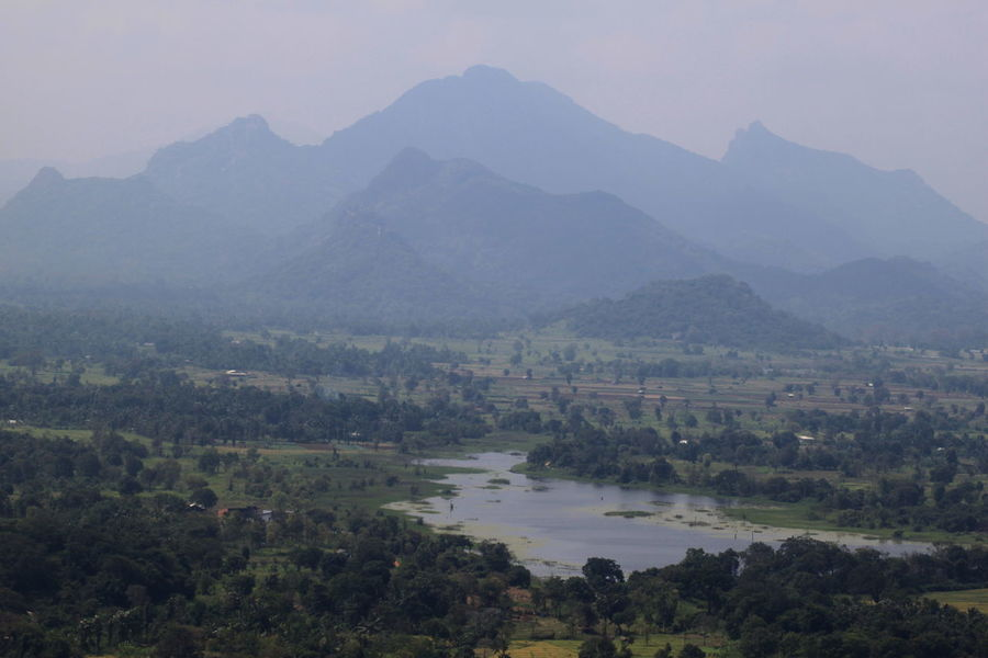 Fog Hill Lake Landscape Mountain Mountain Range Nature Outdoors Sigiriya Sky Sri Lanka Tree