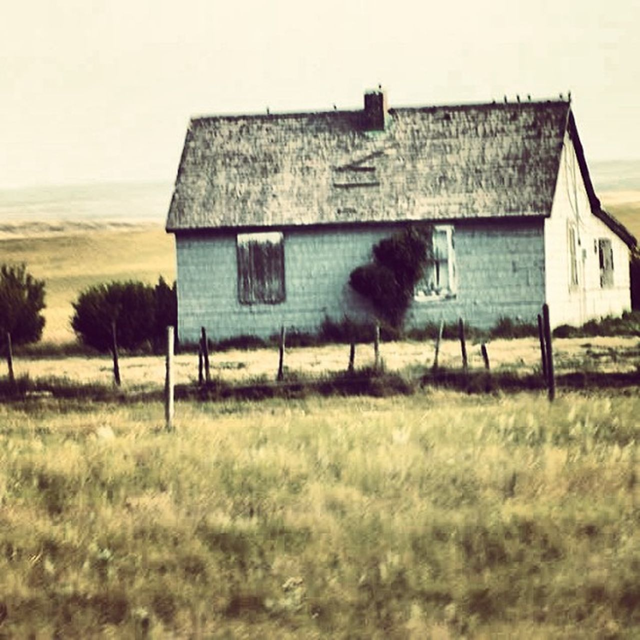 architecture, built structure, building exterior, house, old, abandoned, hut, run-down, outdoors, grass, no people, weathered, old-fashioned, roof, barn, spooky, day, farmhouse, sky, prison, film industry