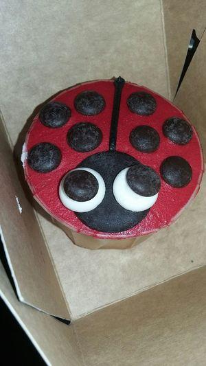 Cupcakes Cupcakes! Cupcakedesigns Cup Cakes Baking Cupcakes Eating Cupcakes