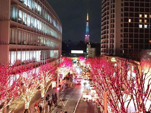 Christmastime Tokyo tower🎄✨