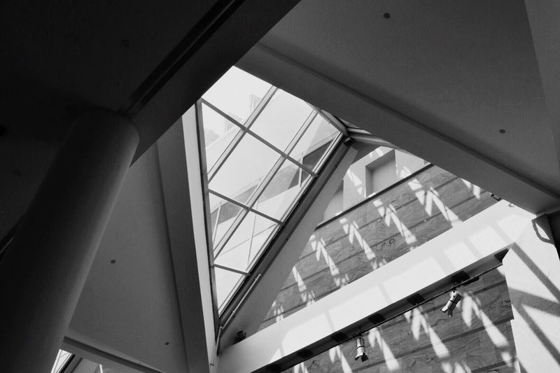 Architecture Low Angle View Built Structure Indoors  Railing Day No People Window Building Sunlight Nature Glass - Material Transparent Modern Steps And Staircases Pattern Ceiling Staircase EyeEmNewHere