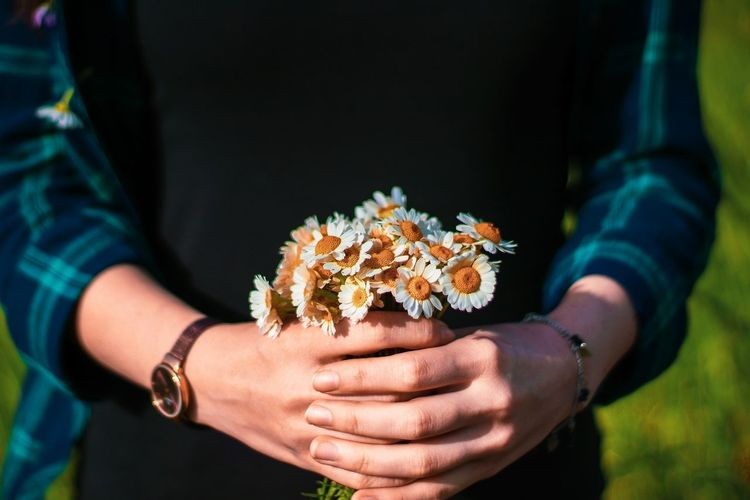 Midsection Of Woman Holding White Flowers