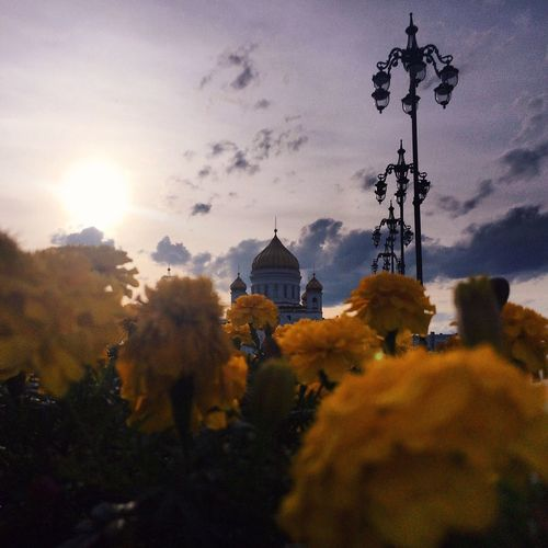Cathedral Of Christ The Saviour Nature Streetphotography Russia
