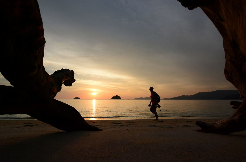 Scenic sunset in Koh Adang. Satun province. Thailand Koh Lipe Satun Province Sunset Silhouettes Thai Thailand Amazing Thailand Beach Beauty In Nature Horizon Over Water Koh Adang Nature Outdoors Sand Scenics Shore Silhouette Sky Southeastasia Sunset Sunsetporn Travel Destinations Tropical Trunk Tree Vacations