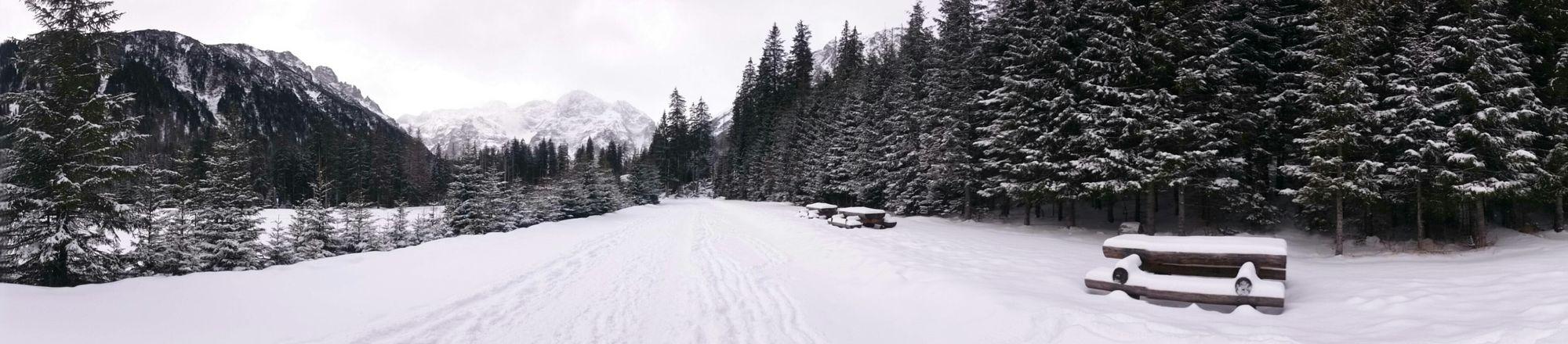 Snow Simplicity Winter MyPhotography Polishgirl Poland Mountains Tatry Morskieoko Showcase: February Alone