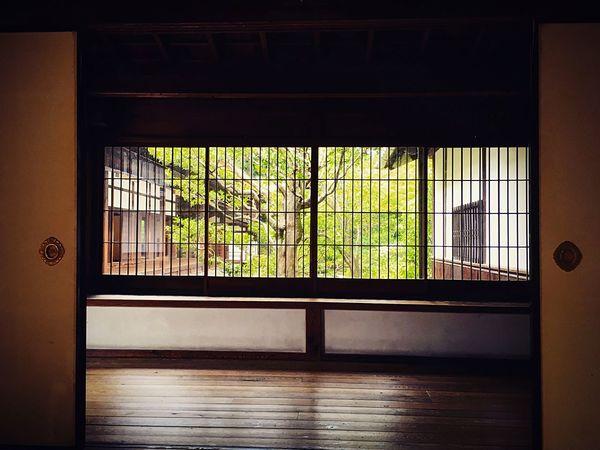 建仁寺 本坊 東山 京都 Kyotojapan Kyoto Relaxing