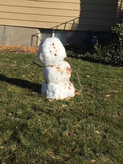 Derick's snowman ⛄️ the only thing left after the snow ❄️ Melting Snowman  Grass Representation Sunlight No People Green Color Nature Plant Day Creativity Human Representation Snowman Outdoors