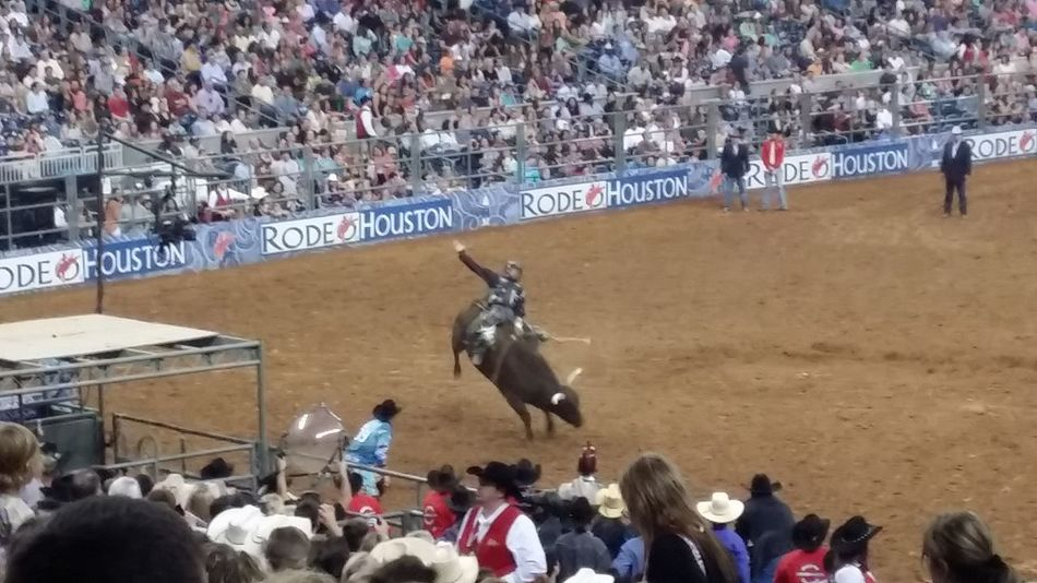 Taking Photos Hanging Out Enjoying Life Check This Out Houston Rodeo